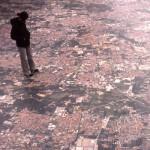 XX TRIENNALE IN MILANO 2001-2004