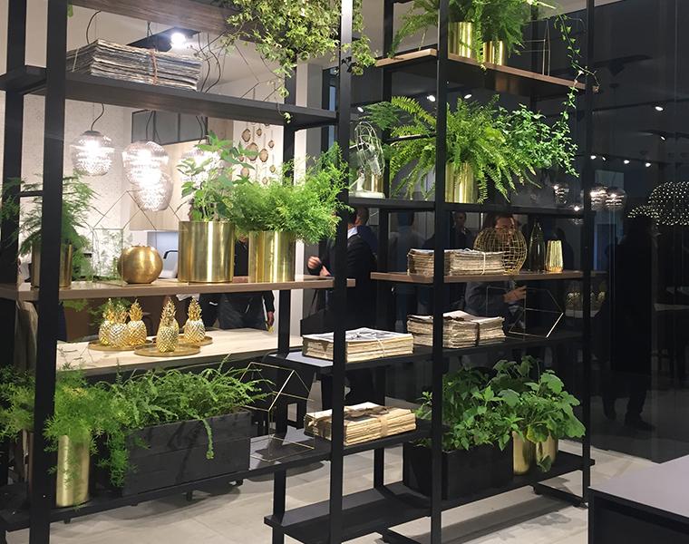 Baufromat, spazio anche al verde in cucina