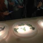 Lexus, Tortona Design Week, nasturzio, lampone e fragola