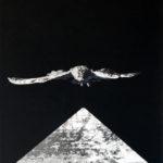 Autoritratto del Superstudio, 1968, fotomontaggio; in basso da sinistra, Gian Piero Frassinelli, Adolfo Natalini, Roberto Magris, Cristiano Toraldo di Francia (Archivio Superstudio)