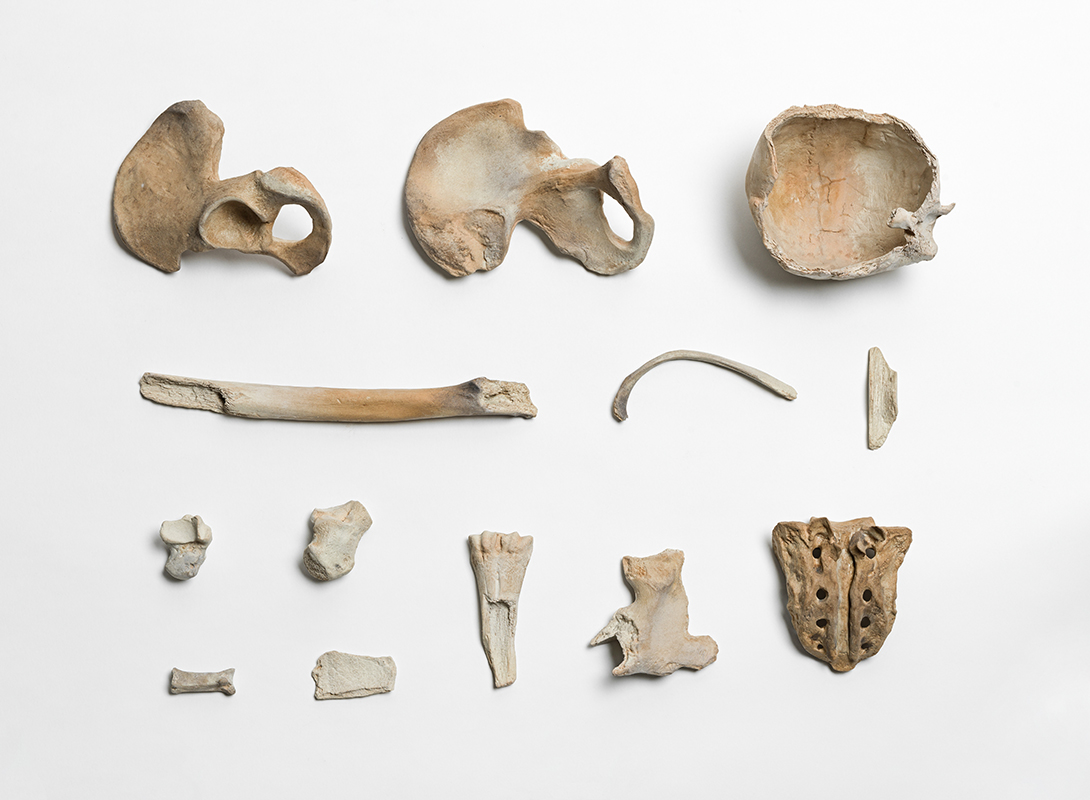Remains, 2015, porcelain, thirteen pieces, dimensions variable. © and courtesy of Ai Weiwei Studio